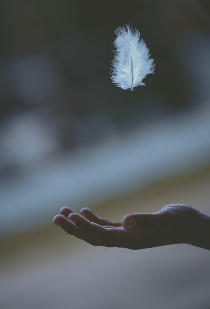 Catch your feather with an open hand