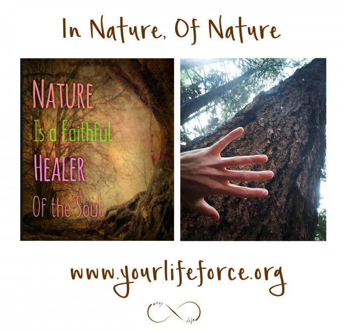 your life force energy