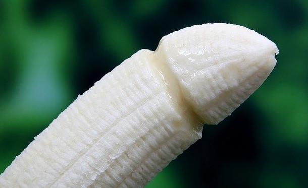Phallic banana bears