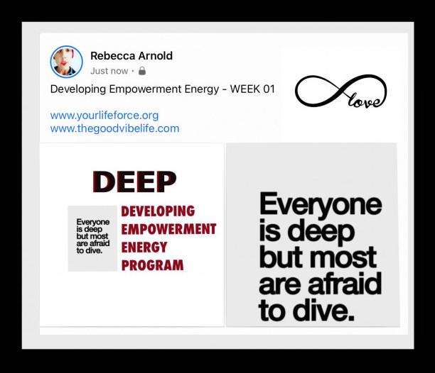 The developing empowerment energy program