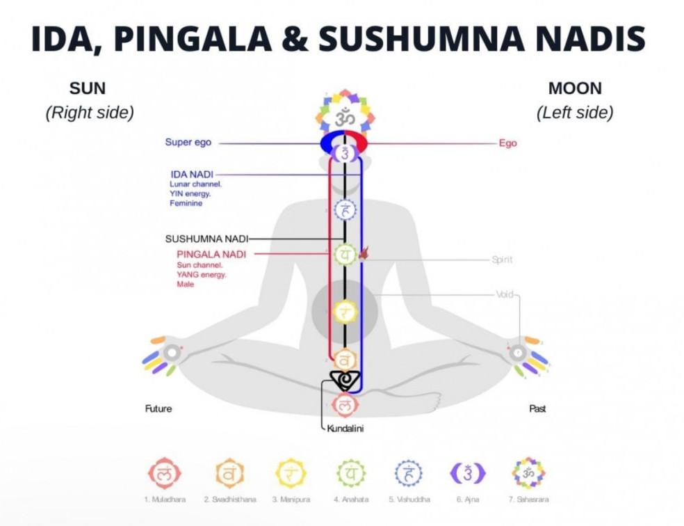 What is kundalini energy with nadis