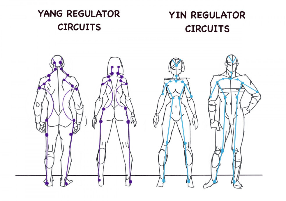 The regulator circuits
